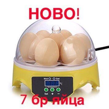 Инкубатор за 7 яйца люпилня пилета птичи пиле инкобатор яйце