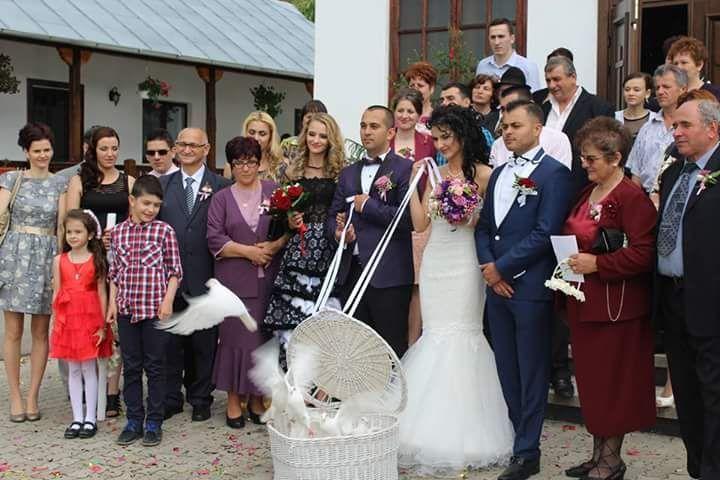 Porumbei albi nunta Târgoviste