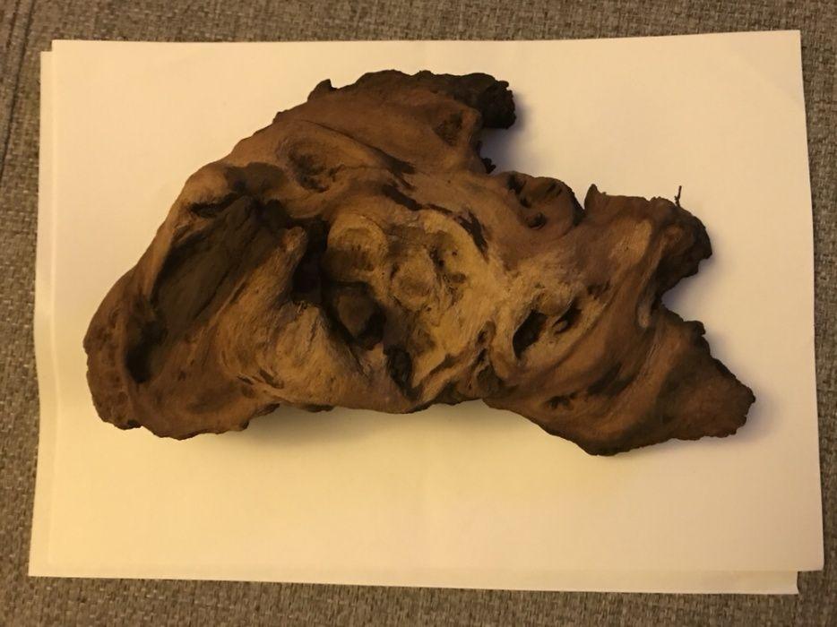 Decor buturuga lemn acvariu terariu gecko scorpion tarantula reptile