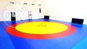 Борцовский ковер 6х6 трехцветный покрышка