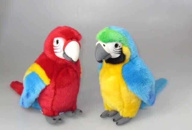 Papagal din plus
