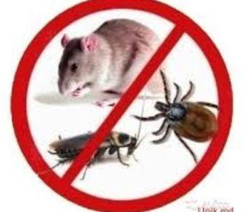 Дезинфекция. Выведем клопов, тараканов, блох, муравьев,мышей Гарантия!