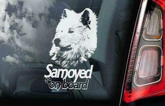 Стикери Домашни любимци -Samoyed, Jack Russell Terrier,Pitbull,Pomeran