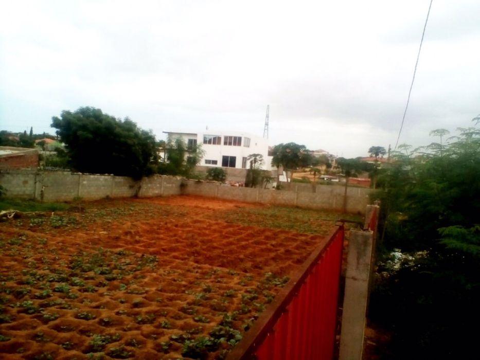 Vendemos Terreno Com 800 m2 Localizado no Kifica Benfica - imagem 2