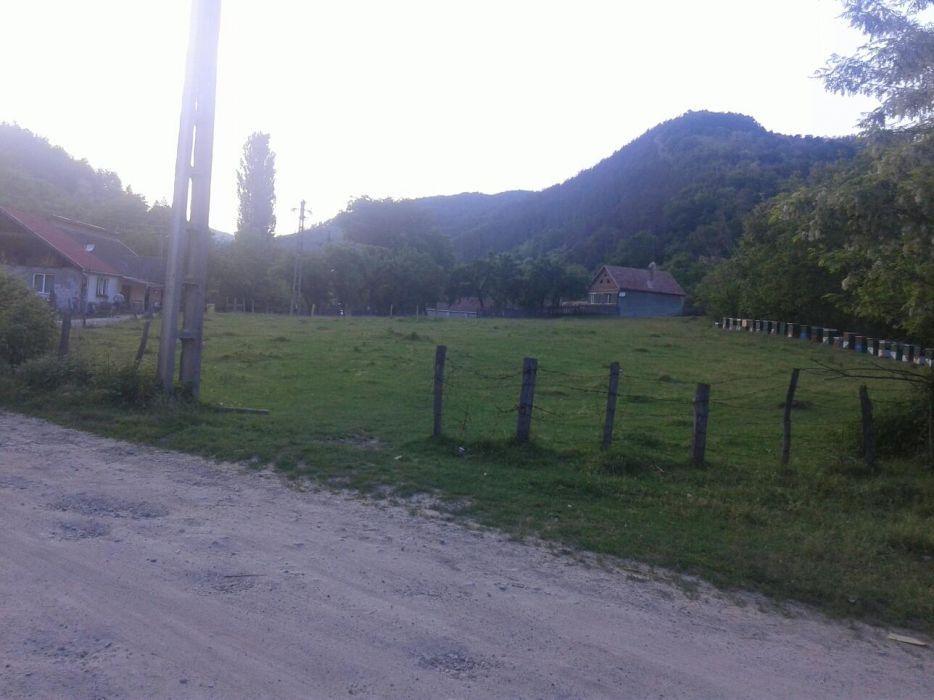 Vanzare  terenuri constructii Alba, Valea Vintului  - 0 EURO