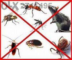 Пръскане срещу хлебарки,дървеници,бълхи,унищожаване на плъхове,мишки.