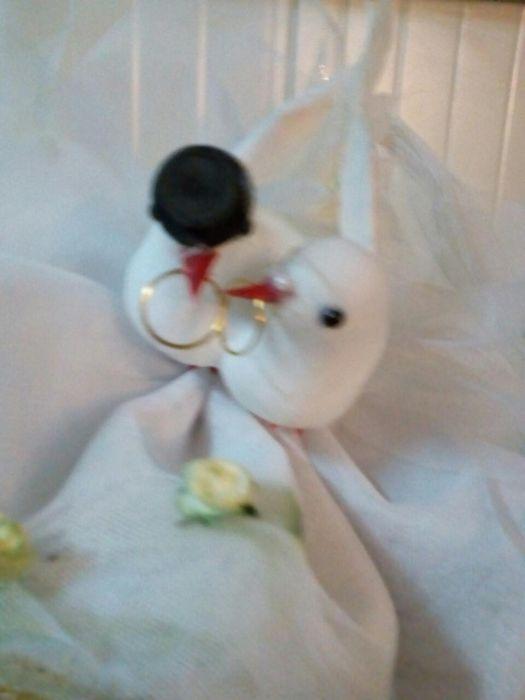 Porumbei pentru nuntă