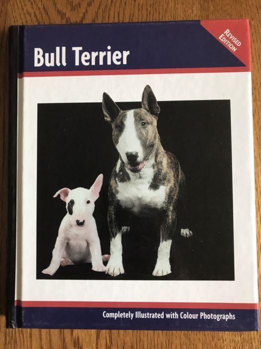 Carte Bull Terrier