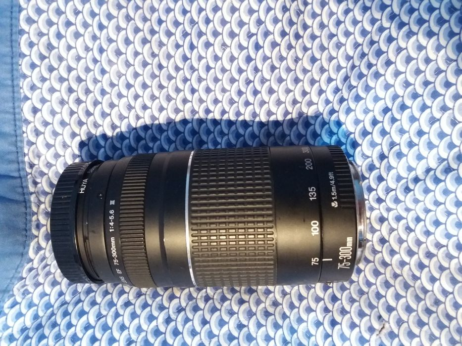 Canon EF 75-300mm 1:4-5.6