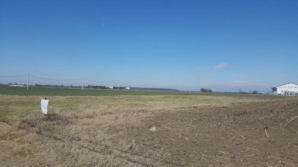 Vanzare  terenuri constructii Ilfov, Odaile  - 0 EURO