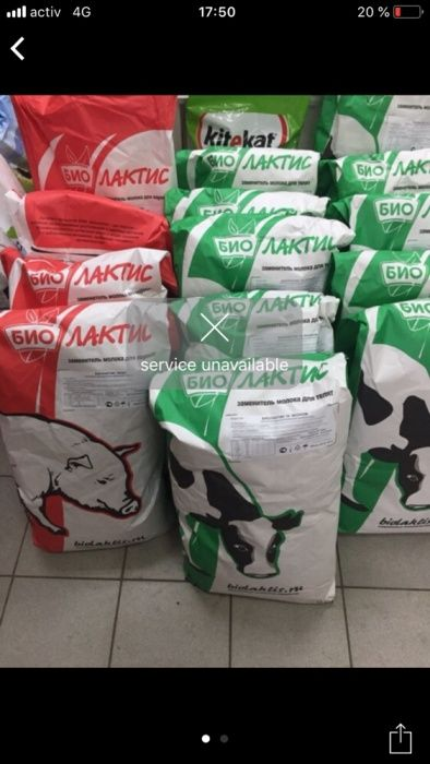 Сухое молоко Биолактис 16% для телят