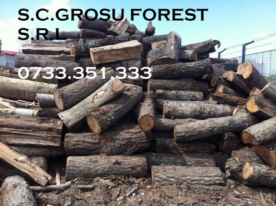 lemne de foc, esenta tare