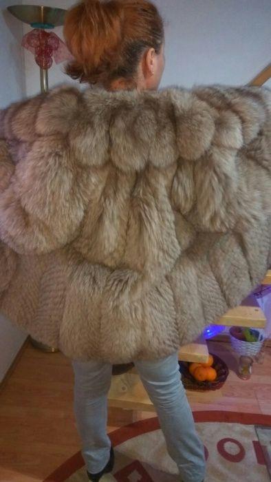 Haina de blana vulpe platinata