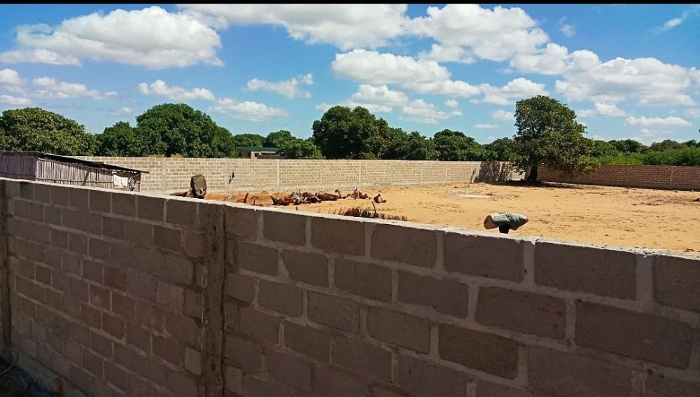 Vendo terreno 60X60 em Pemba VEDADO
