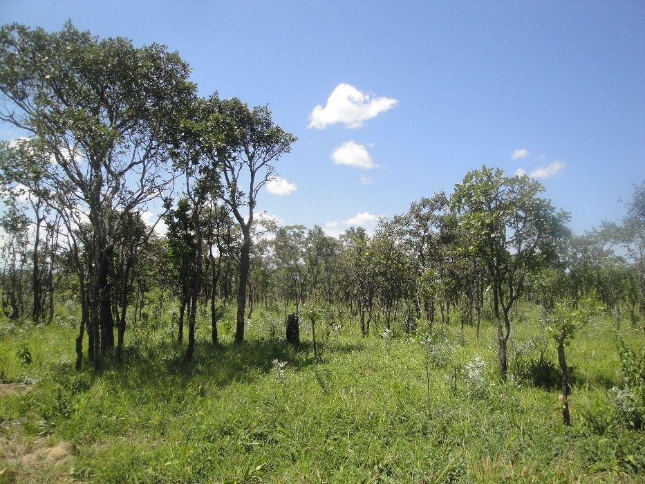 Terreno 193 Hectares Alto Hama - Huambo