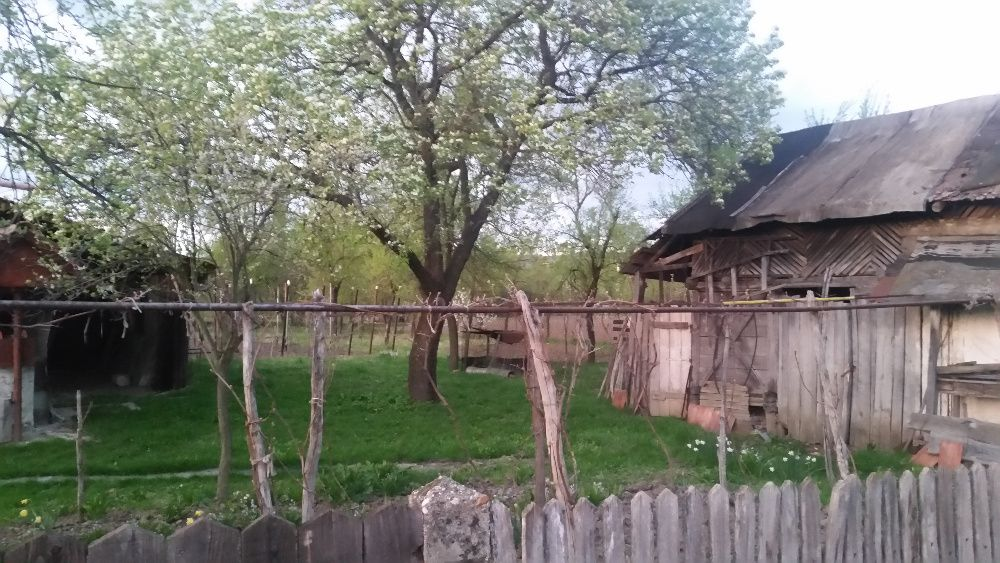 Vanzare  terenuri constructii  1350 mp Gorj, Turceni  - 7200 EURO