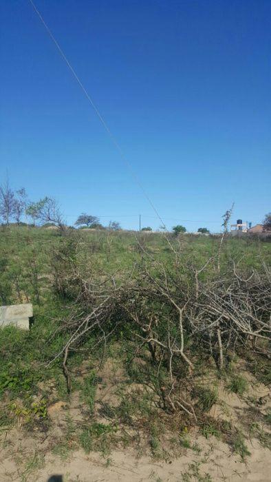 5 hectares na n4 wit bank propícios para vários fins ganha