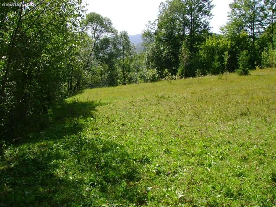 Vanzare  terenuri constructii Hunedoara, Campu lui Neag  - 24000 EURO