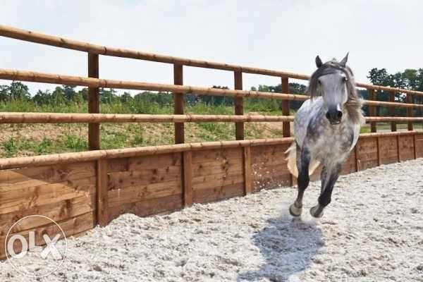 Manejuri pentru cai