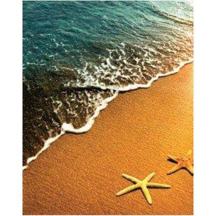 Завеса за баня: Морски звезди на плажа, СПА камъни, РОЗА