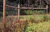 Stalpi pentru gard din lemn tratat, calibrat si ascutit