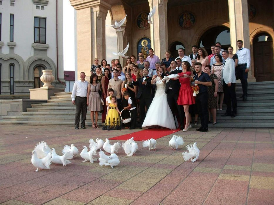 Porumbei albi pentru nuntă, Fum greu și Gheață Carbonică