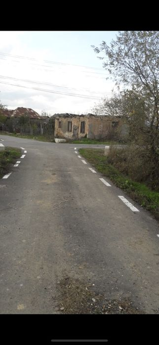 Vanzare  terenuri constructii  3000 mp Cluj, Mica  - 221 EURO