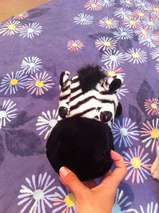 papusa gargarita,zebra ochioasa si iepuras