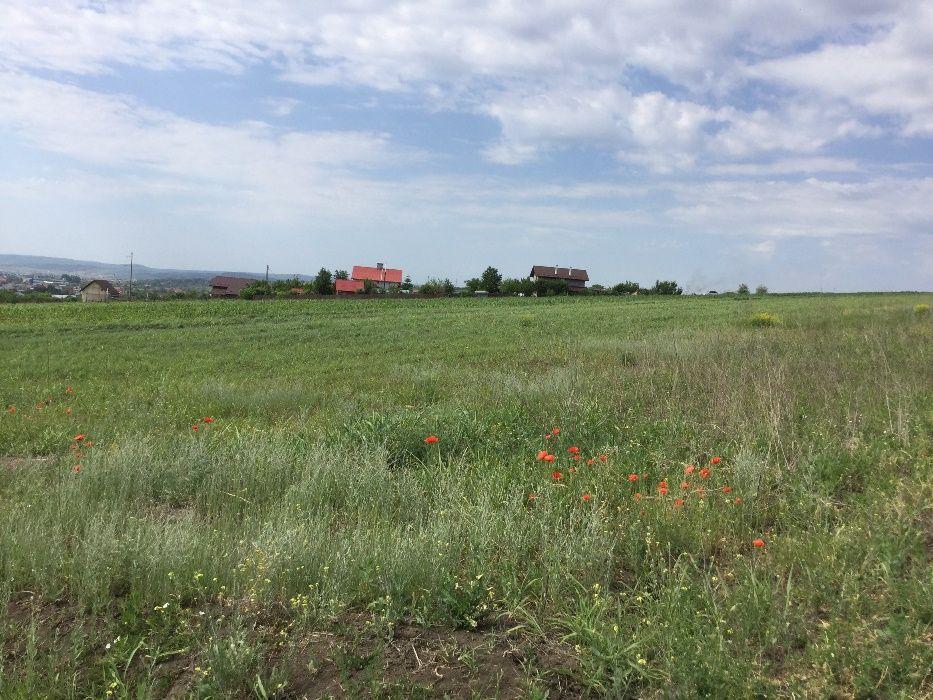 Vanzare  terenuri agricol Vaslui, Moara Grecilor  - 3 EURO
