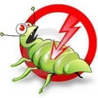 Mantém a sua casa fora dos insetos