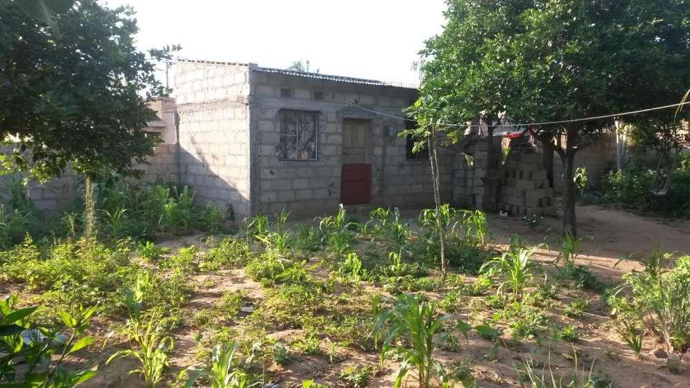 Casa Tipo 1 no bairro de Ndlhavela