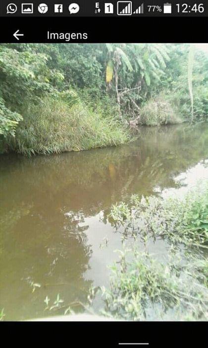 Vende-se Fazenda de 50 hectares no Bengo ao lado do asfalto e do rio.