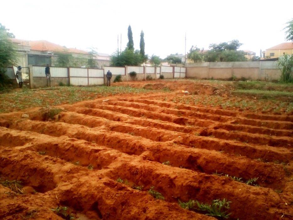 Vendemos Terreno Com 800 m2 Localizado no Kifica Benfica - imagem 4