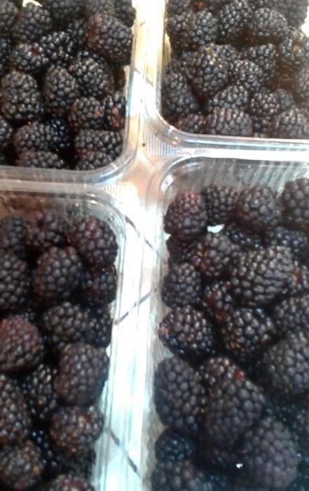 Fructe de mur de cultura soiul Thornfree