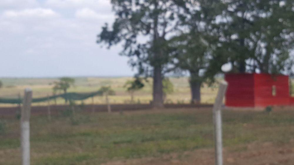 Terreno para quinta