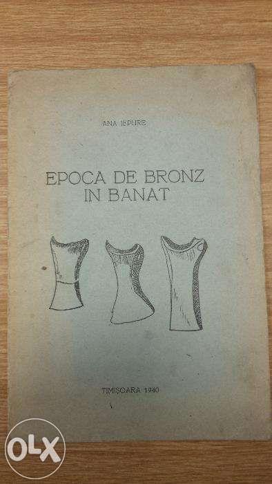 Epoca de bronz din Banat