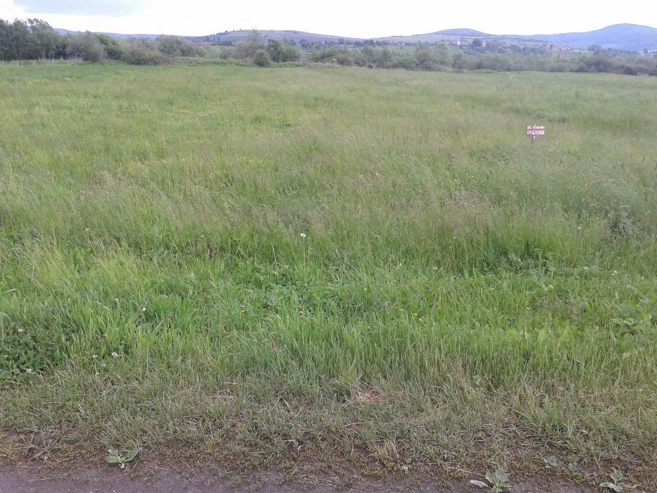 Vanzare  terenuri constructii Bistrita Nasaud, Budacu de Jos  - 431 EURO