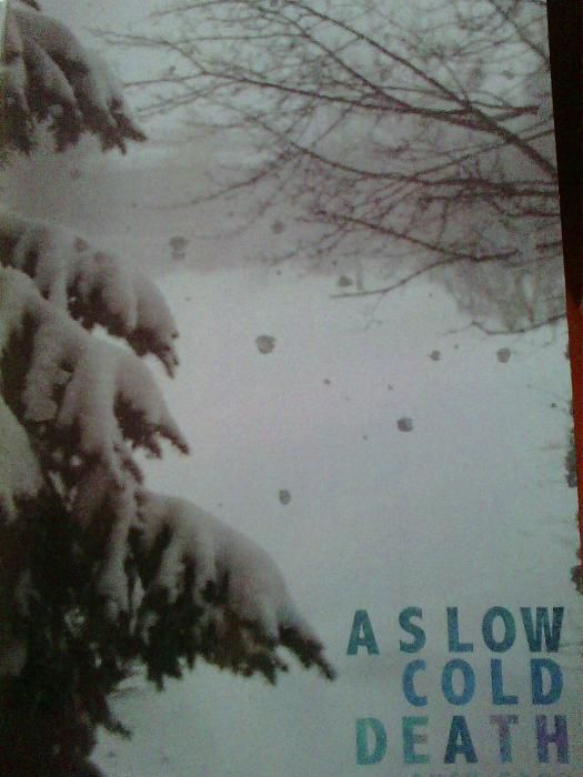 A slow cold death de Susy Gage