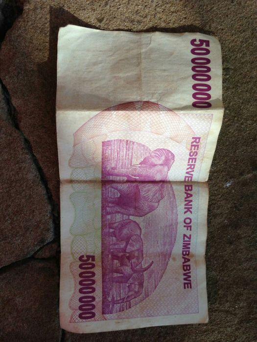Dollar de Zimbabwe 2008
