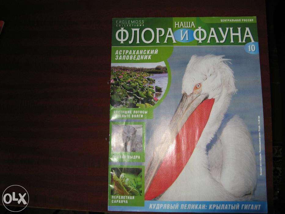 Журнал «Наша флора и фауна», №№ 10, 38