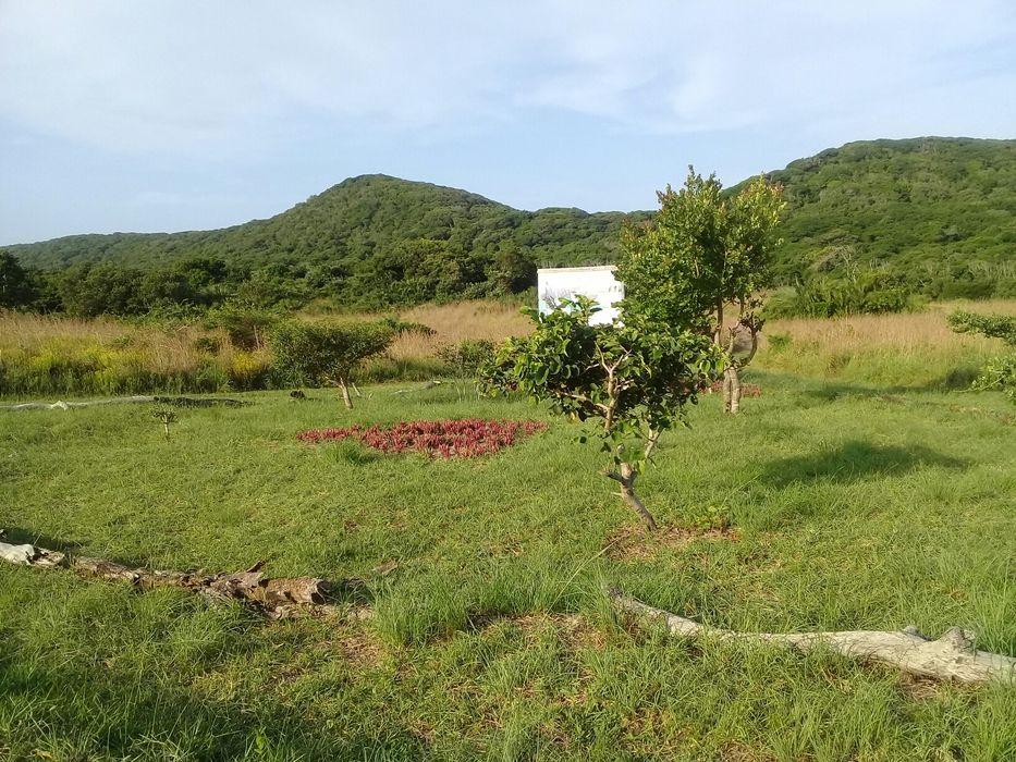 Terrenos em Ponta Mamoli perto da Praia