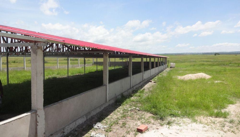 Fazenda 20 Hectares legalizados