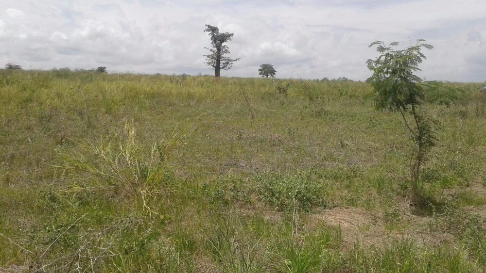 Fazenda na funda bem localizada 7,6 hectares