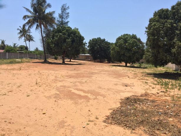 Mahotas 50x100.Vedado Maputo - imagem 1