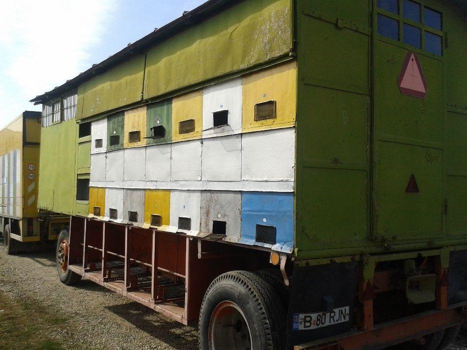 Lichidare stupina-Vand/schimb cu auto pavilion apicol inscris 44 fam