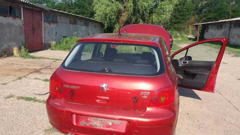 Haion / Hayon Peugeot 307 an 2003 Hatchback visiniu