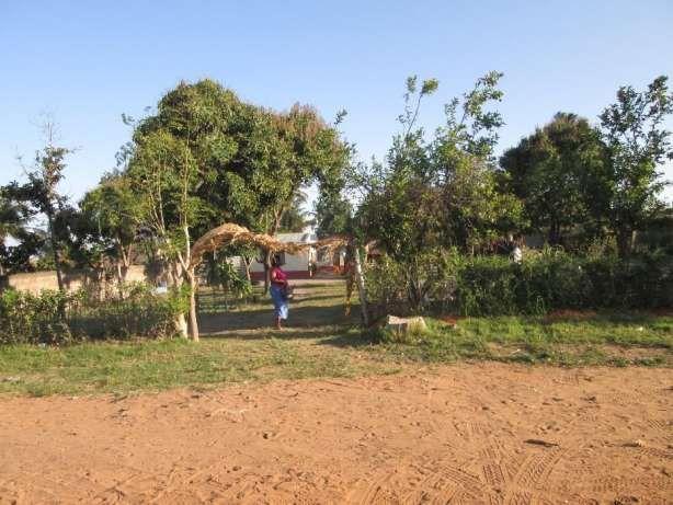 Dona Alice 30\50 atras do Kalunga. Maputo - imagem 1