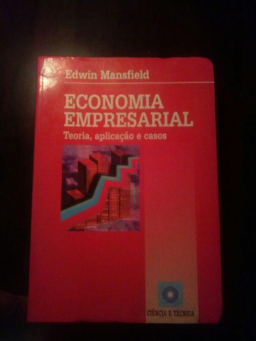 Livro(Economia Empresarial,Teoria, aplicação e casos)