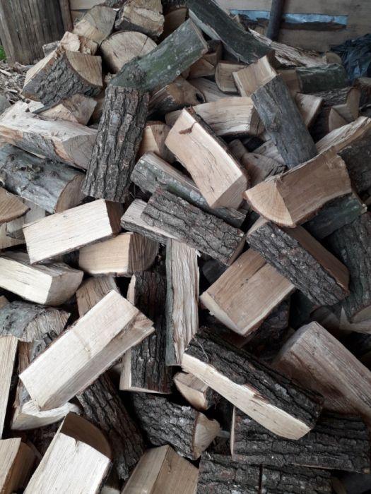 vand lemne foc uscate si verzi