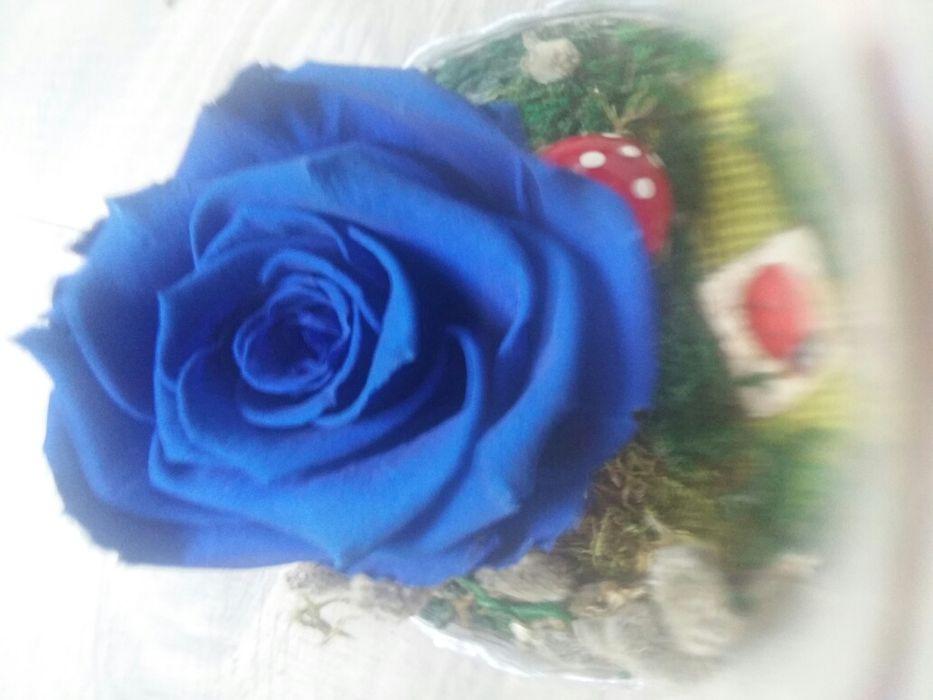Handmade Trandafir criogenat albastru